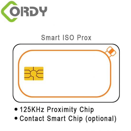 RFID dual card with contact IC